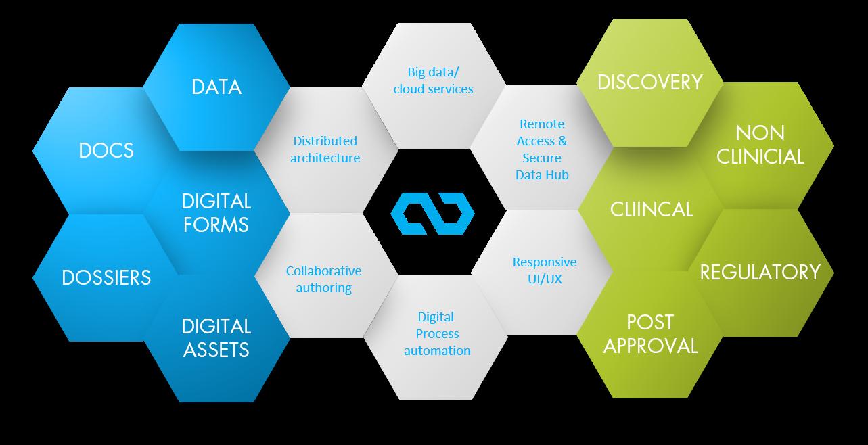 infographic-arivis5D-platform-processes