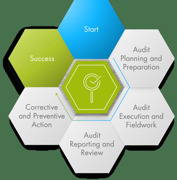 infographic-audit-management