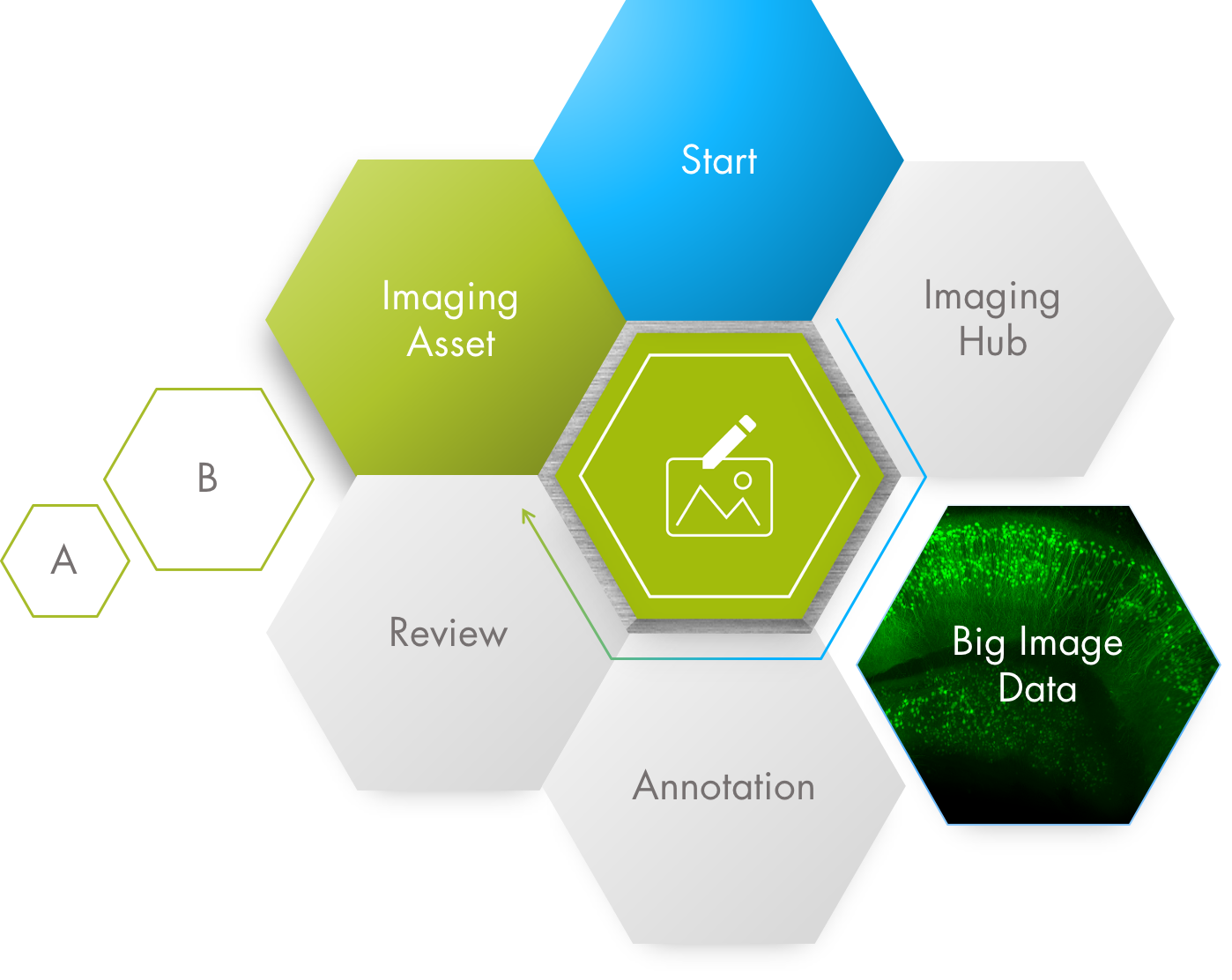 infographic-image-annotation